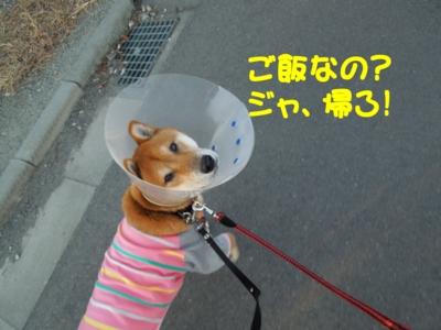 f:id:miyuki1967:20120107221819j:image