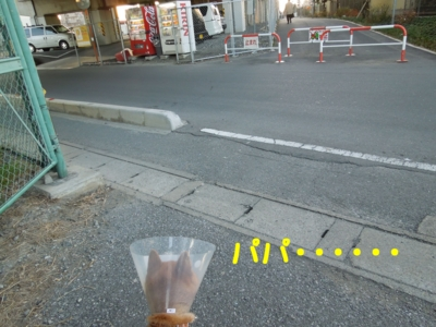 f:id:miyuki1967:20120107221918j:image