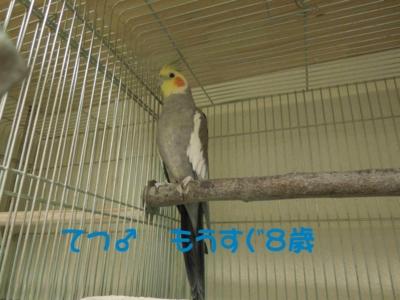 f:id:miyuki1967:20120111092302j:image