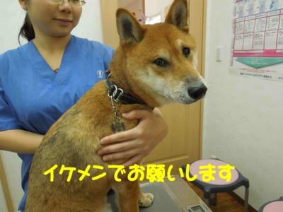 f:id:miyuki1967:20120111102906j:image