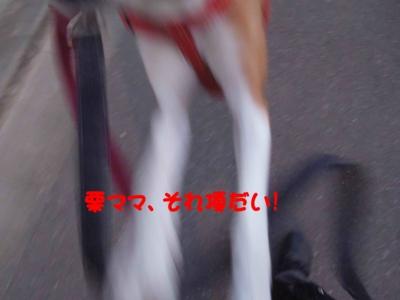 f:id:miyuki1967:20120112094129j:image