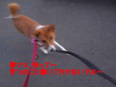 f:id:miyuki1967:20120112094241j:image
