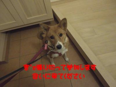 f:id:miyuki1967:20120112100513j:image
