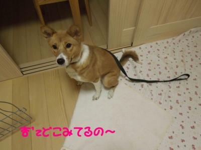 f:id:miyuki1967:20120112111407j:image