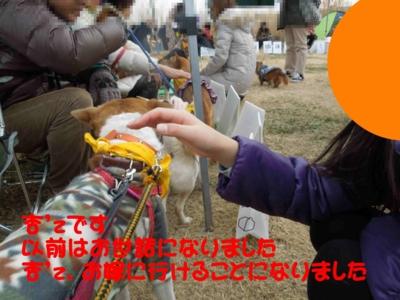 f:id:miyuki1967:20120116100122j:image