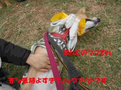f:id:miyuki1967:20120116100140j:image