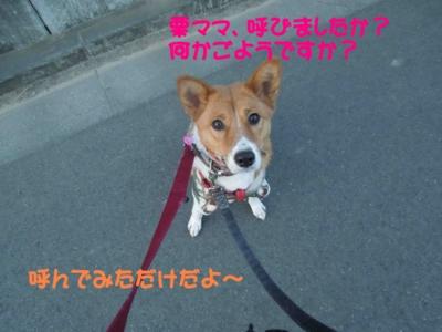 f:id:miyuki1967:20120119095248j:image