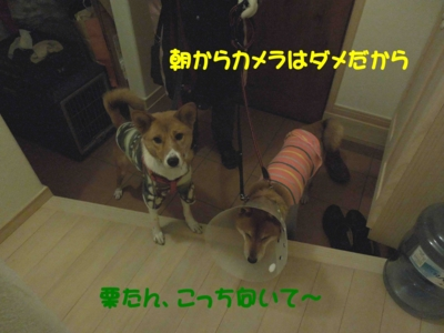 f:id:miyuki1967:20120119104040j:image