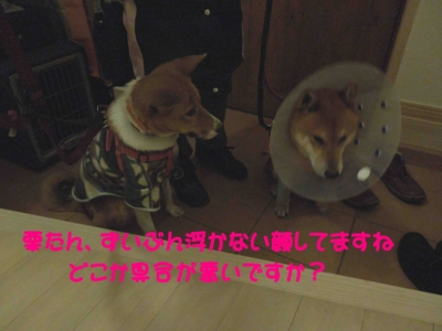 f:id:miyuki1967:20120119104042j:image