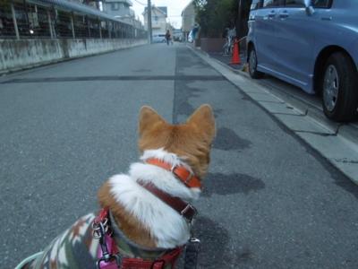 f:id:miyuki1967:20120123065522j:image