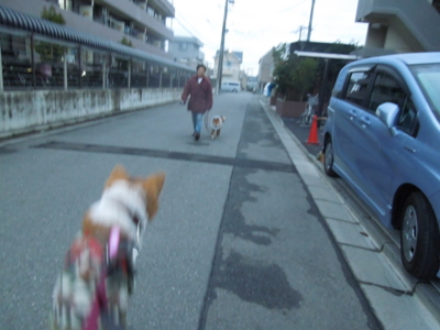 f:id:miyuki1967:20120123065545j:image
