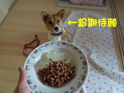 f:id:miyuki1967:20120128115100j:image