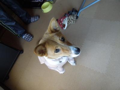 f:id:miyuki1967:20120129112856j:image