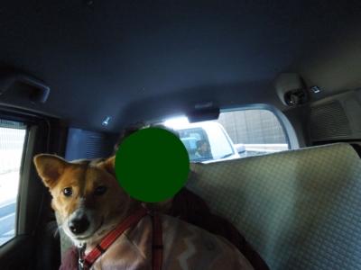 f:id:miyuki1967:20120129135311j:image