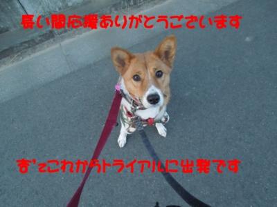 f:id:miyuki1967:20120129155108j:image