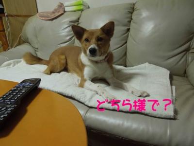 f:id:miyuki1967:20120228125737j:image