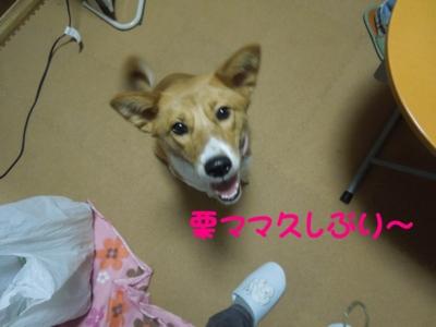 f:id:miyuki1967:20120228125739j:image