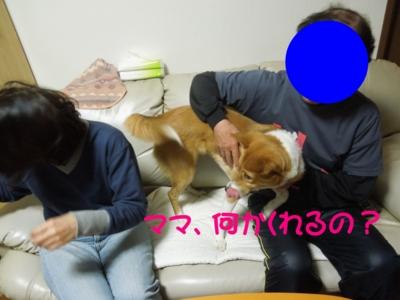 f:id:miyuki1967:20120228125742j:image