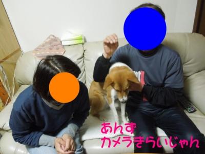 f:id:miyuki1967:20120228125743j:image