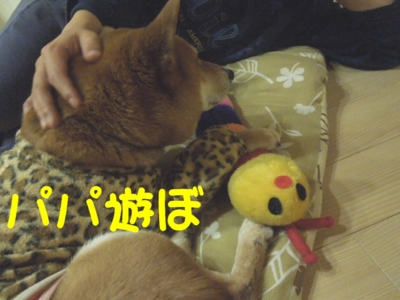 f:id:miyuki1967:20120403113211j:image