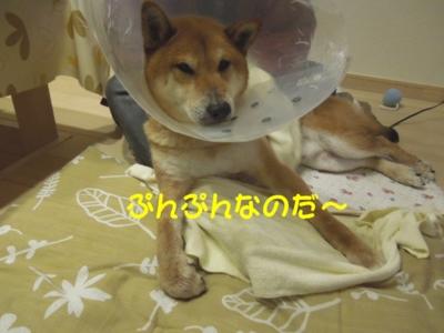 f:id:miyuki1967:20120404095624j:image
