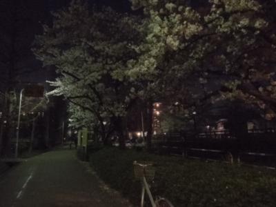f:id:miyuki1967:20120409190153j:image