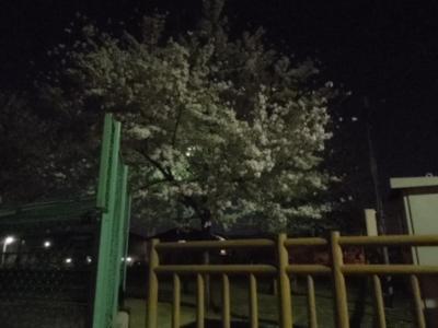 f:id:miyuki1967:20120409190518j:image