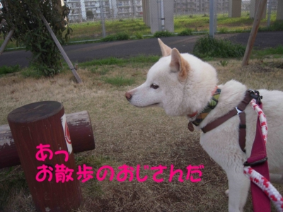 f:id:miyuki1967:20120416093640j:image