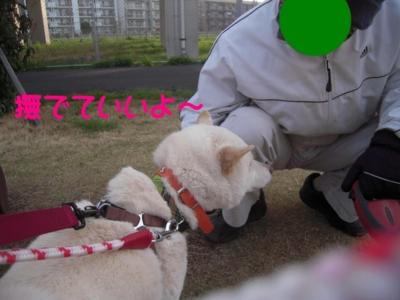 f:id:miyuki1967:20120416093641j:image