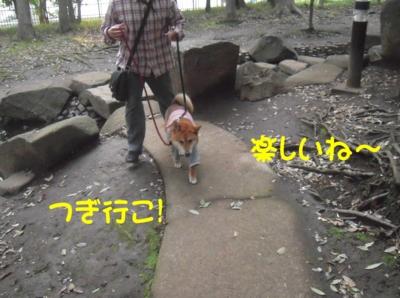 f:id:miyuki1967:20120416093643j:image