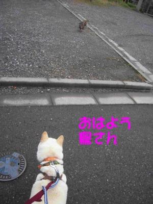 f:id:miyuki1967:20120419143010j:image