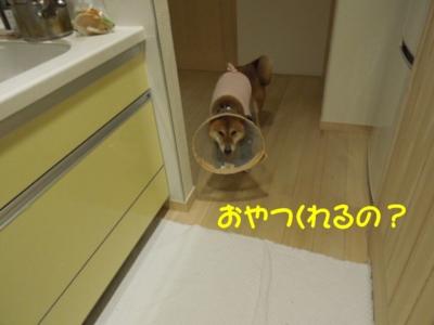 f:id:miyuki1967:20120420091949j:image