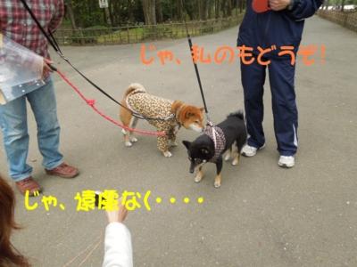 f:id:miyuki1967:20120423110620j:image