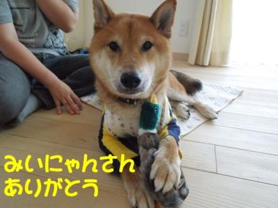 f:id:miyuki1967:20120714211855j:image