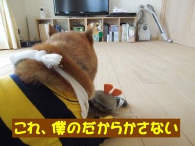 f:id:miyuki1967:20120714211857j:image