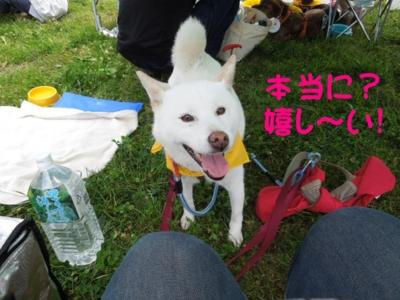 f:id:miyuki1967:20120717090756j:image