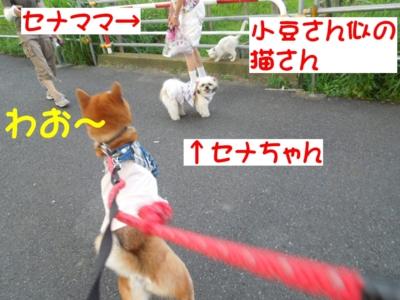f:id:miyuki1967:20120803111041j:image