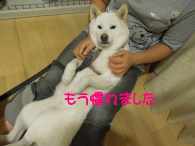 f:id:miyuki1967:20120910094742j:image