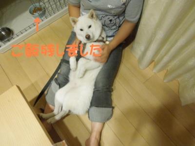 f:id:miyuki1967:20120910094746j:image