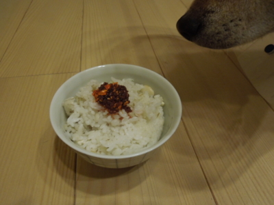f:id:miyuki1967:20121119210945j:image