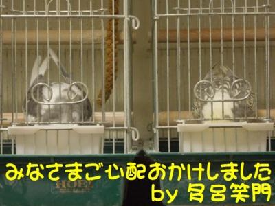 f:id:miyuki1967:20121214145230j:image
