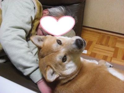 f:id:miyuki1967:20121221115230j:image
