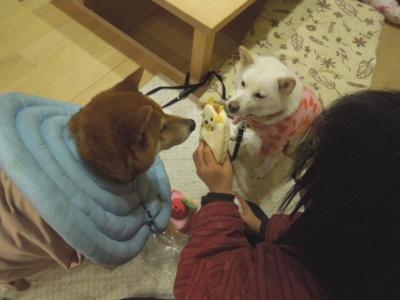 f:id:miyuki1967:20121225112437j:image