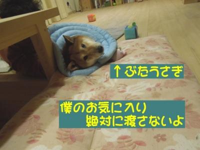 f:id:miyuki1967:20121225112444j:image