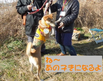 f:id:miyuki1967:20130121094250j:image