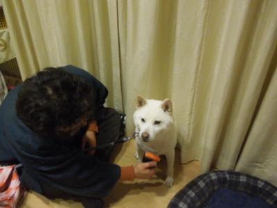 f:id:miyuki1967:20130216221816j:image