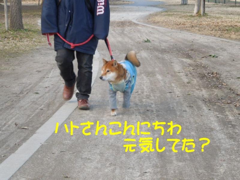 f:id:miyuki1967:20130304103101j:image:w400