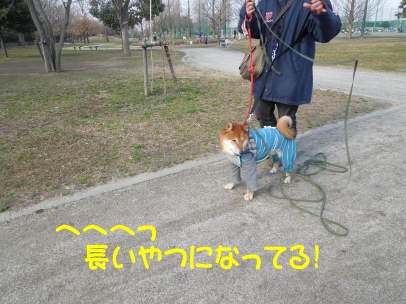 f:id:miyuki1967:20130304103102j:image:w400