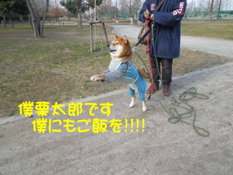 f:id:miyuki1967:20130304103103j:image:w400