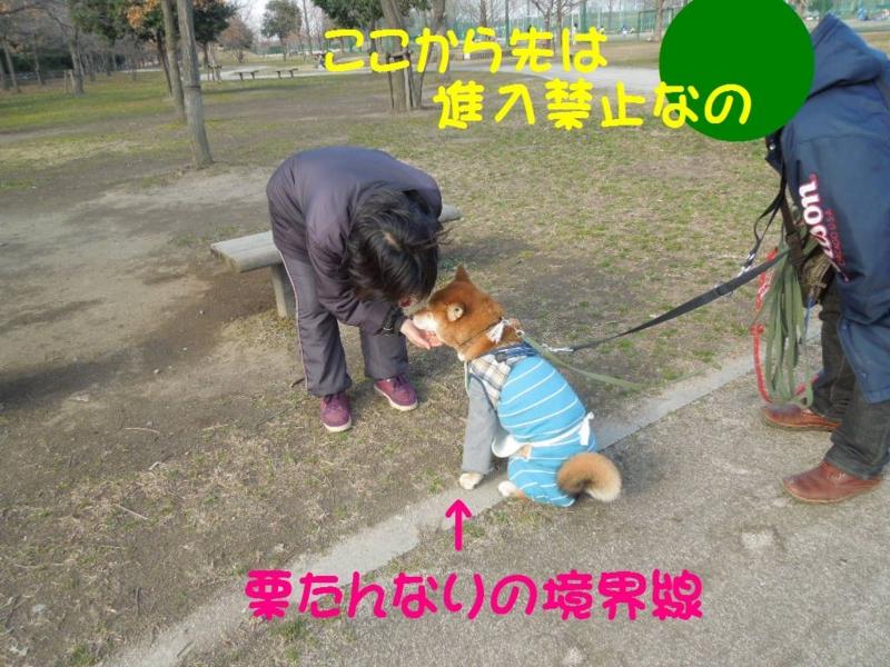f:id:miyuki1967:20130304103104j:image:w400